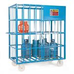 Gas Cylinder/Security Cage